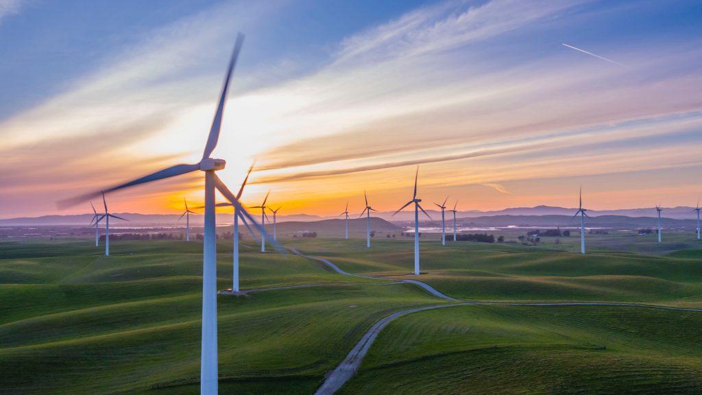utilizar energías renovables es una buena opción para ahorrar en suministros